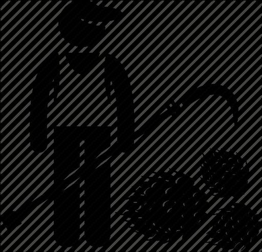 ציוד לאחר קציר - הידרו גרו - פתרונות גידול מתקדמים | 512 x 493 png 44kB